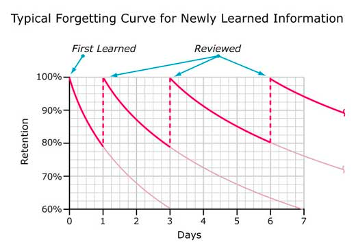 forgetting reviewed